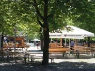 Hopfengarten 006.jpg