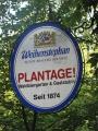 Plantage 013.jpg