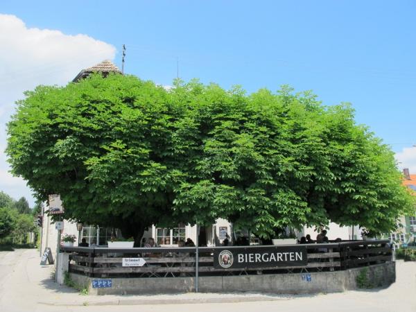 Wirtsgarten 001.jpg